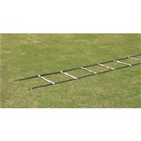 Agility Ladder-Web