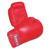 Vinex Boxing Gloves